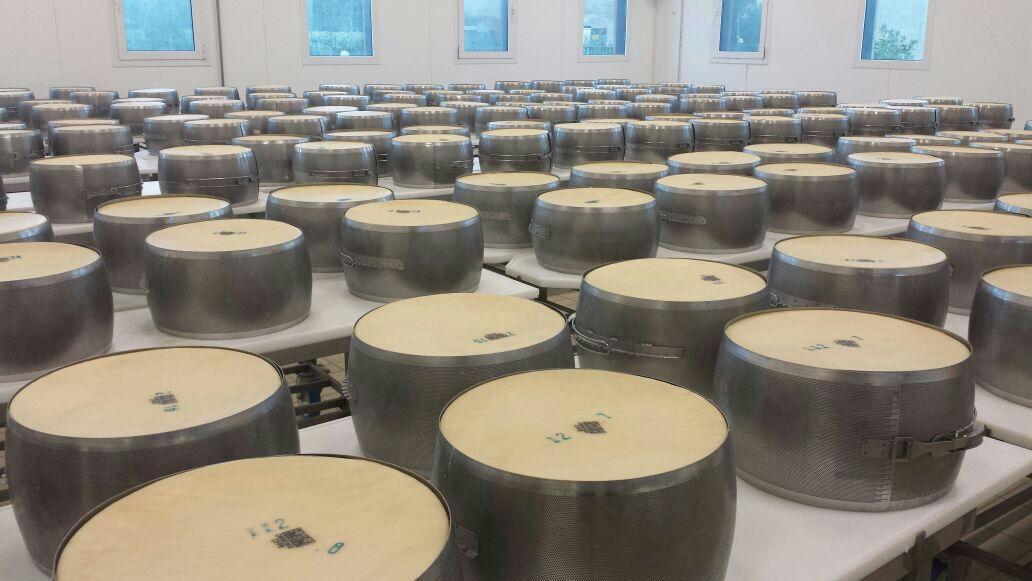 Divus Gourmet visita la fábrica de queso parmesano reggiano en Italia